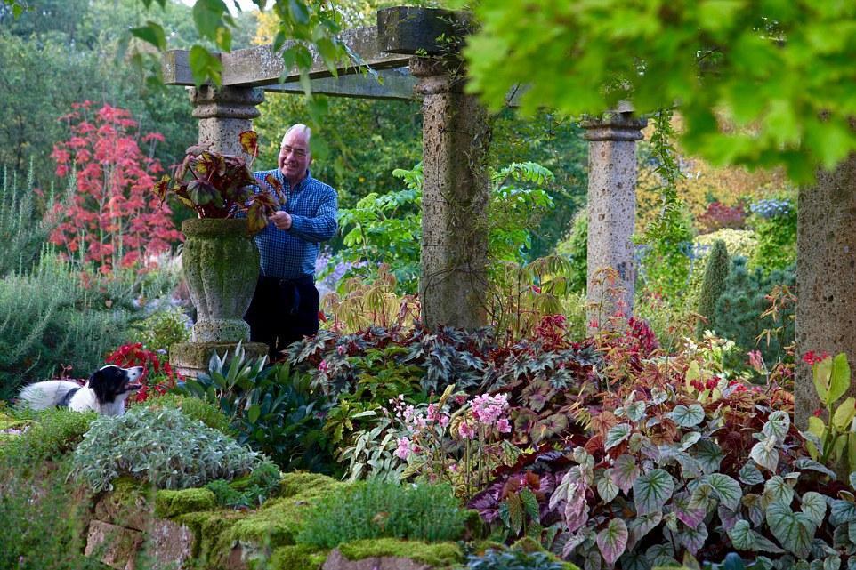 Người đàn ông dành 25 năm biến bãi đất hoang thành thiên đường hoa - 3