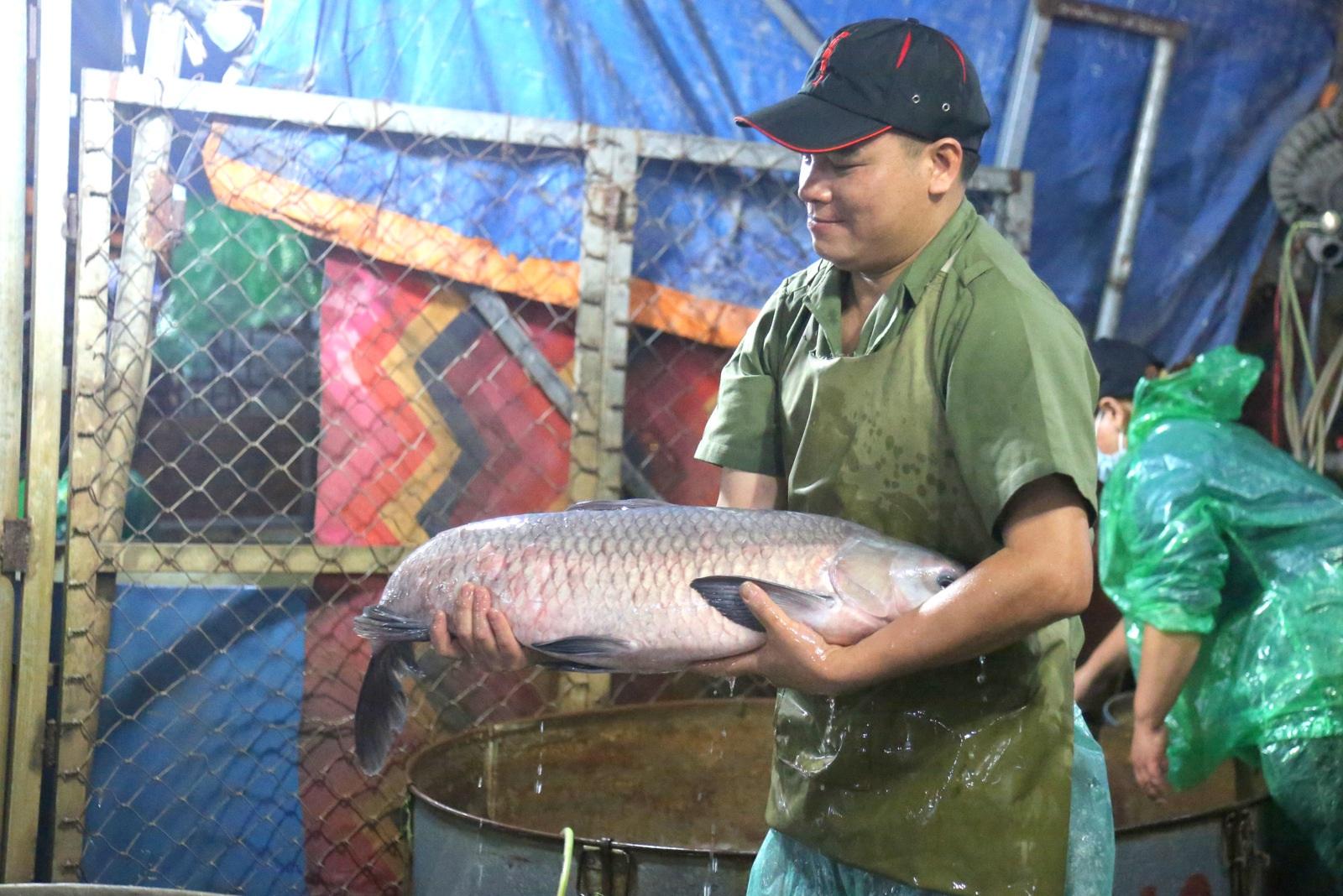 Trắng đêm ngày nghỉ lễ cùng người làm nghề sờ cá - 3