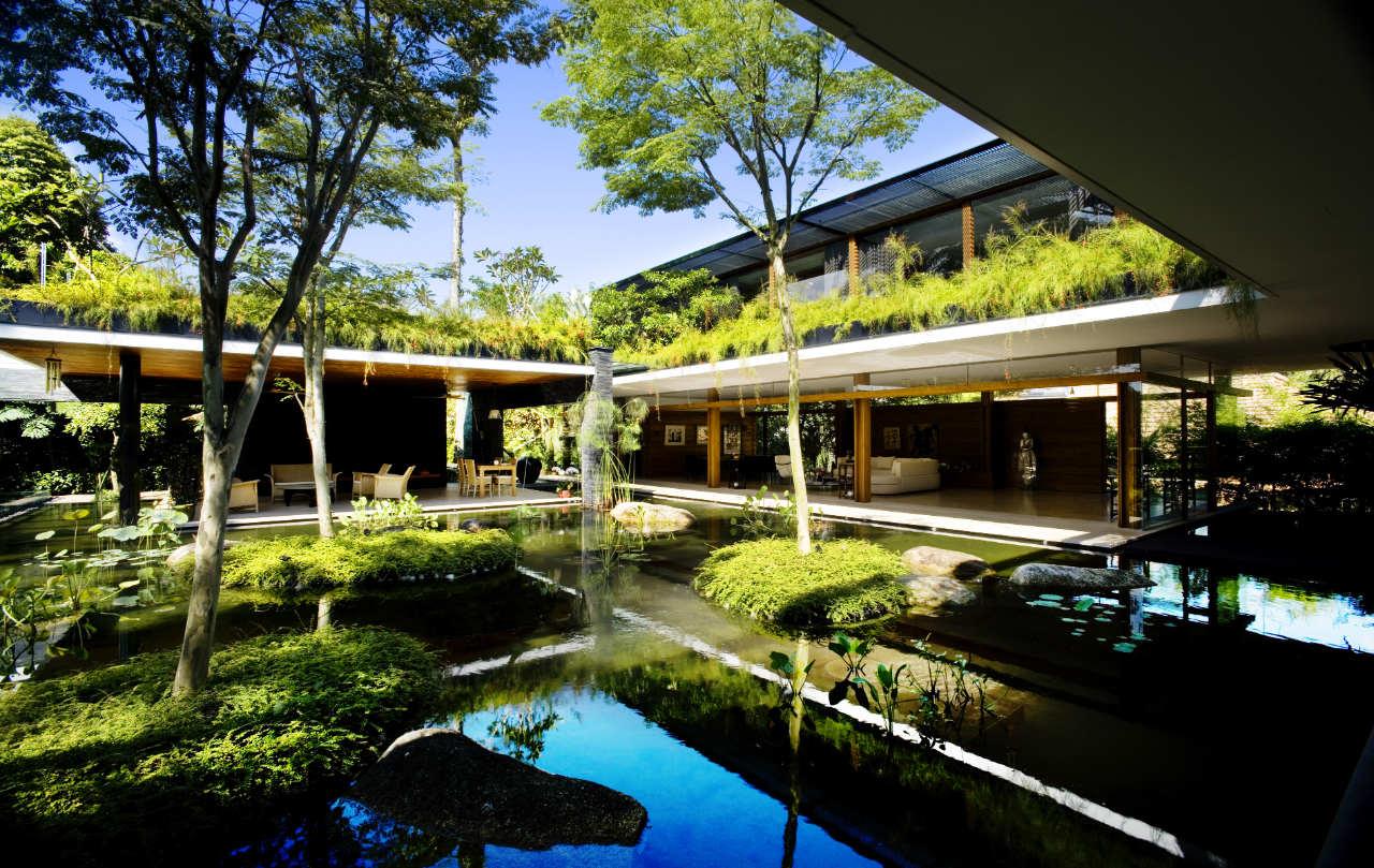 Ngôi nhà đẹp như resort nhờ vườn trên mái, hồ nước ngập cây - 1