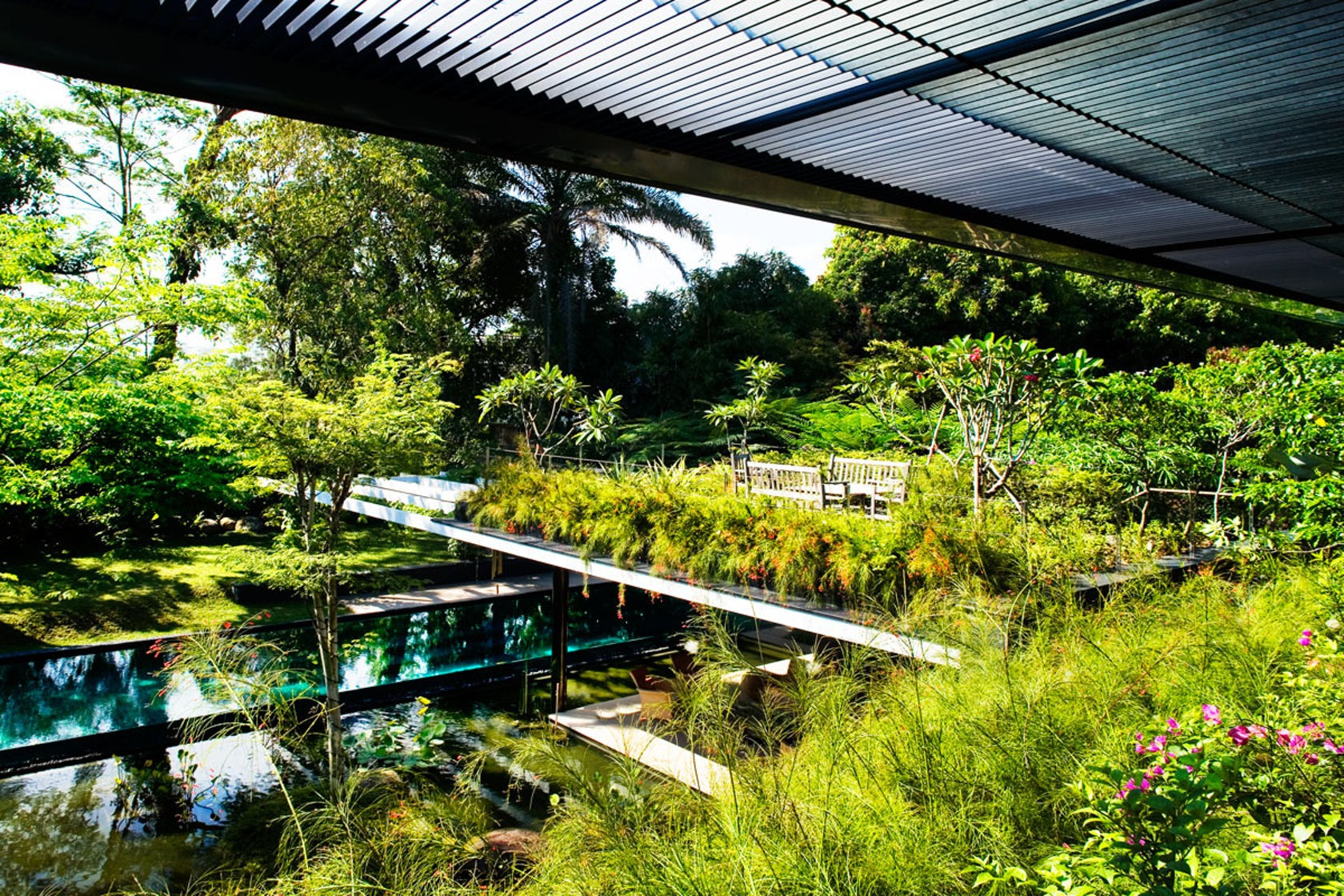 Ngôi nhà đẹp như resort nhờ vườn trên mái, hồ nước ngập cây - 4