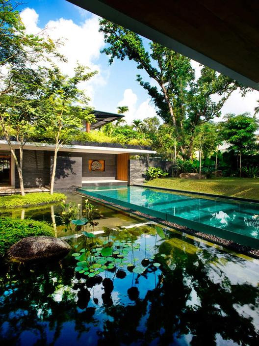 Ngôi nhà đẹp như resort nhờ vườn trên mái, hồ nước ngập cây - 6