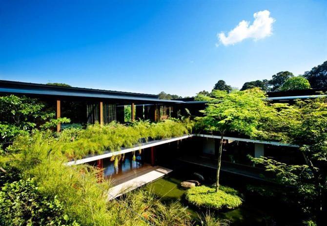 Ngôi nhà đẹp như resort nhờ vườn trên mái, hồ nước ngập cây - 7