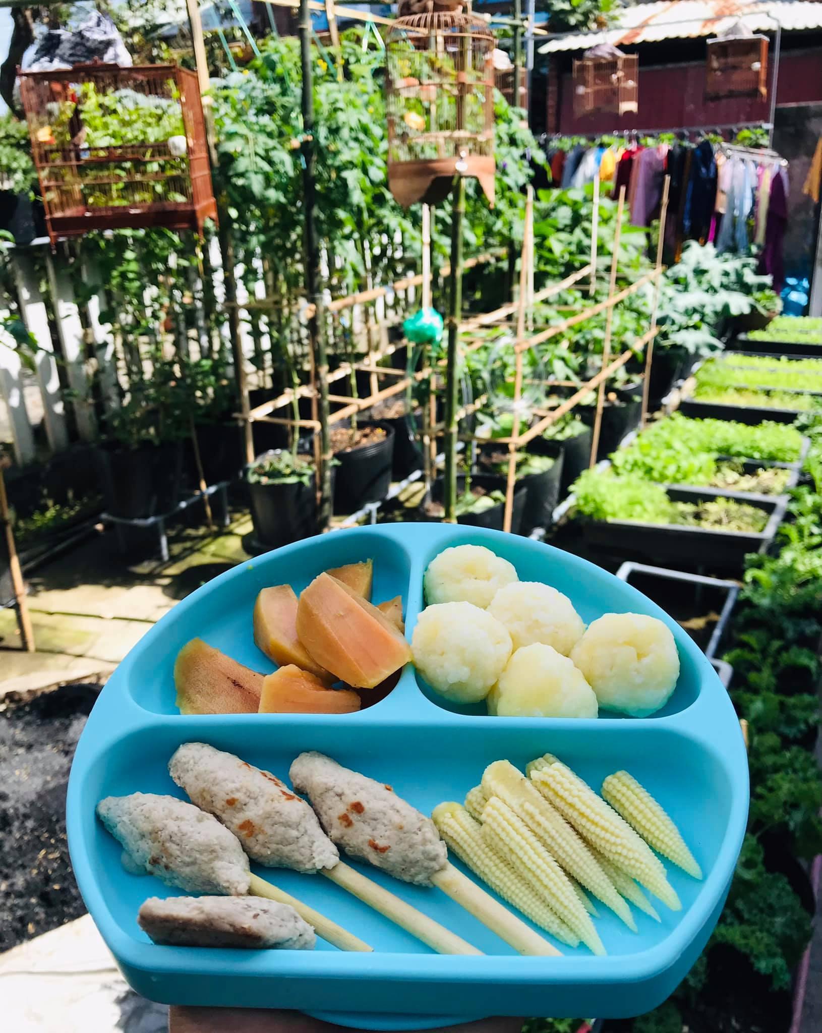 Vườn 60m2 đủ loại rau trái, vợ chồng trẻ ở Quảng Nam không phải đi chợ - 6