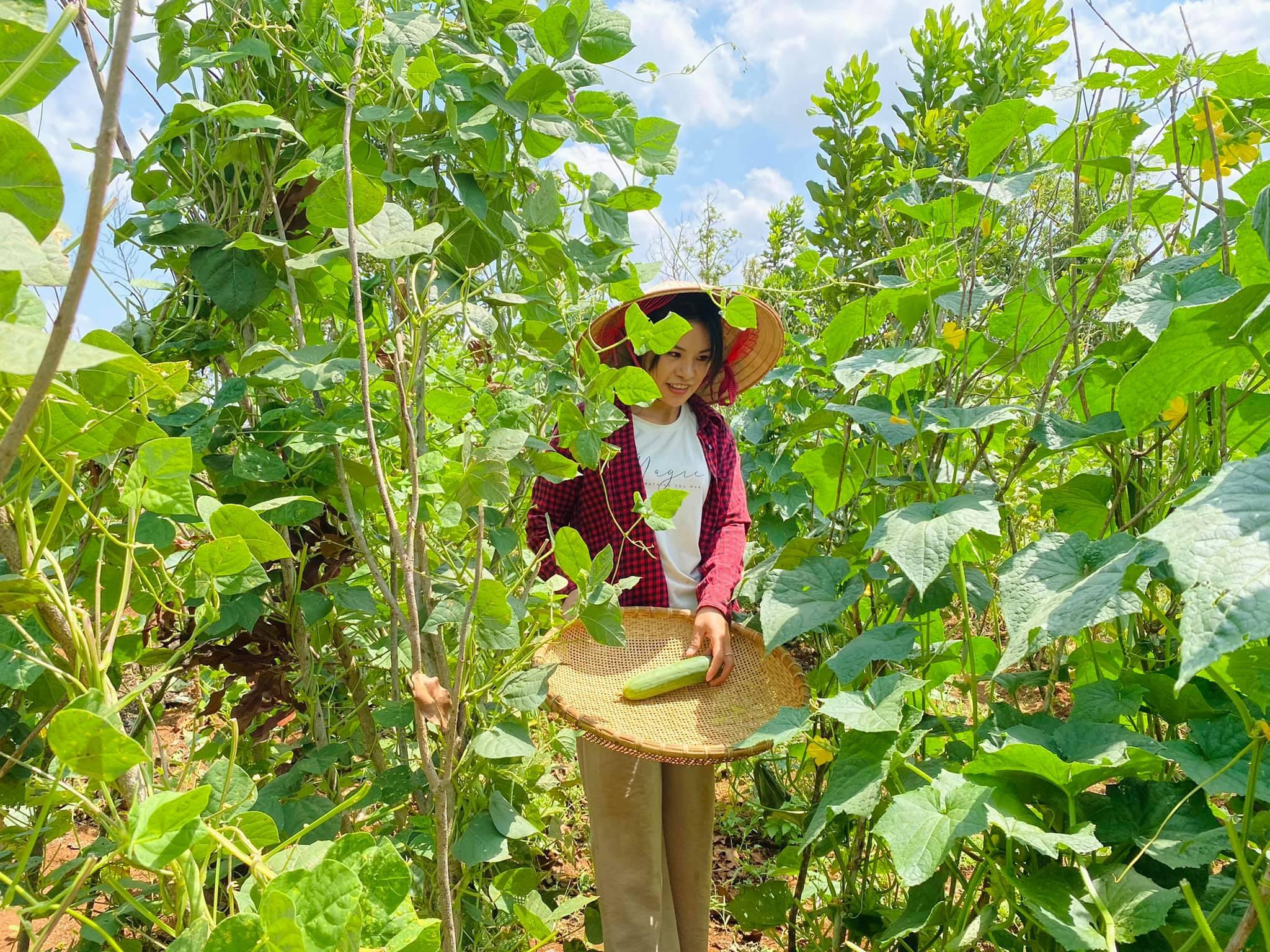 Cô gái bỏ nhà phố, xe sang ở Sài Gòn về quê cuốc đất làm nông dân - 3