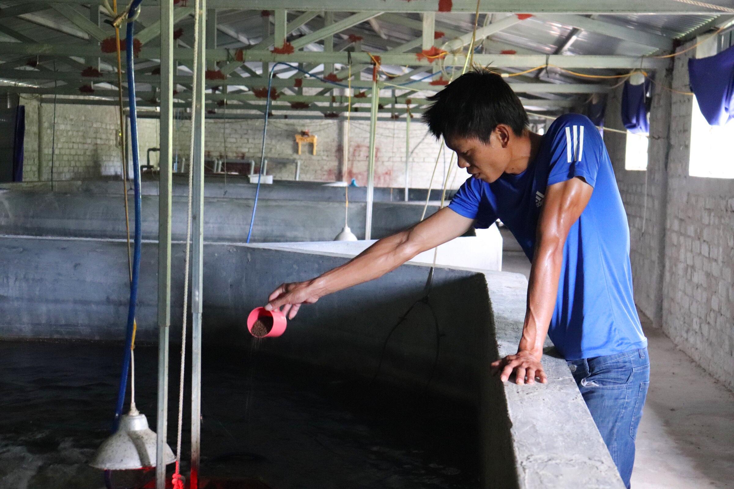 Câu chuyện khởi nghiệp của chàng kỹ sư với 4.000 con cá chình - 1