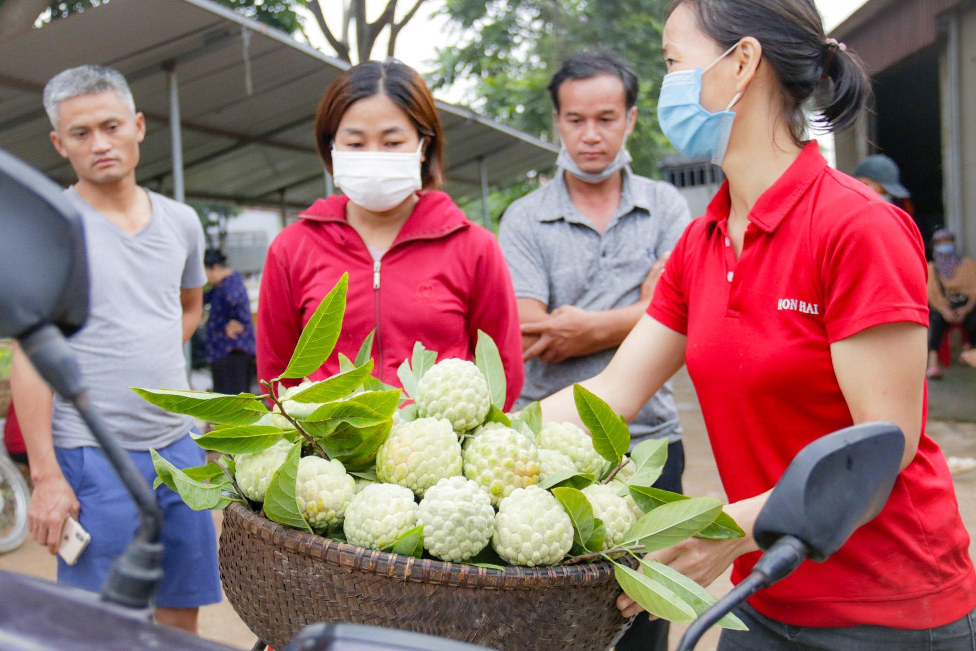 Thu hàng trăm tỷ đồng mỗi năm nhờ trồng loại quả vừa ngọt vừa dai - 3