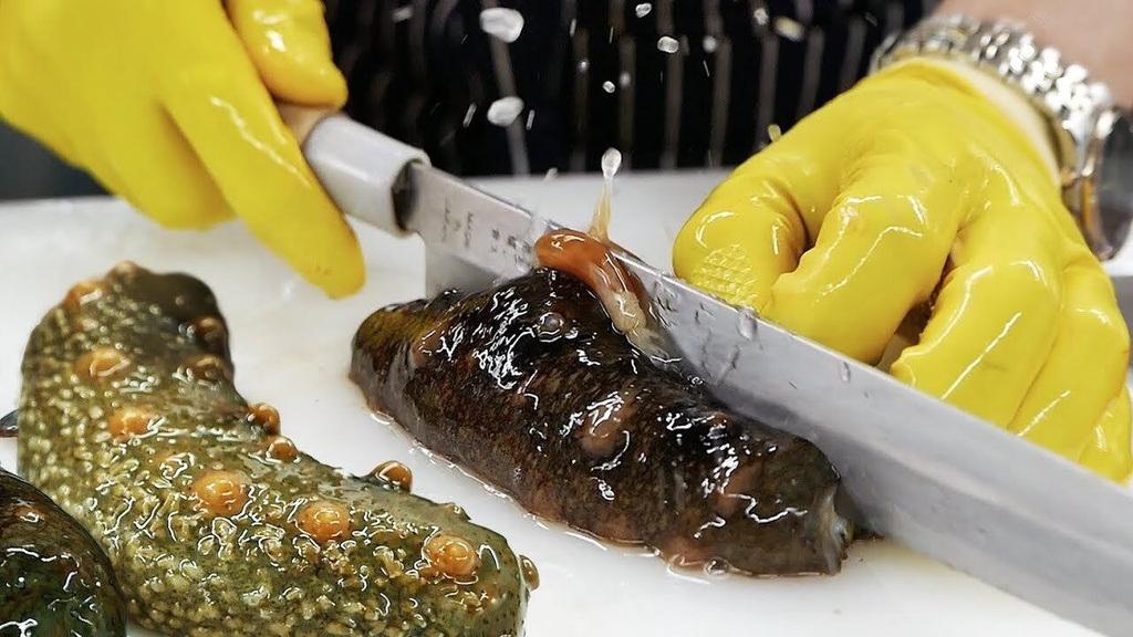Lạ lùng loại nhân sâm biển càng xấu càng đắt, có giá tới 68 triệu đồng/kg - 2