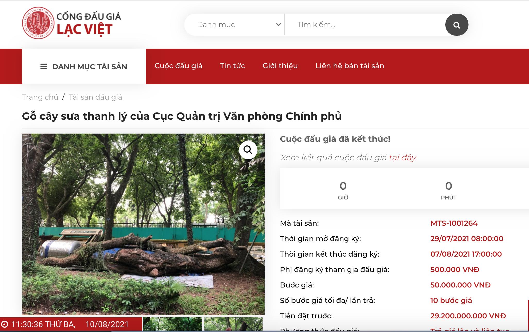 Hà Nội: Đấu giá trực tuyến 7 cây gỗ sưa được gần 235 tỷ đồng - 1