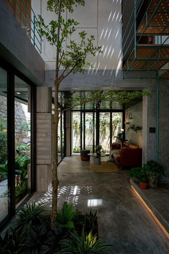 Ngôi nhà Đà Lạt nằm trên sườn dốc với đầy cây lá bên trong - 2