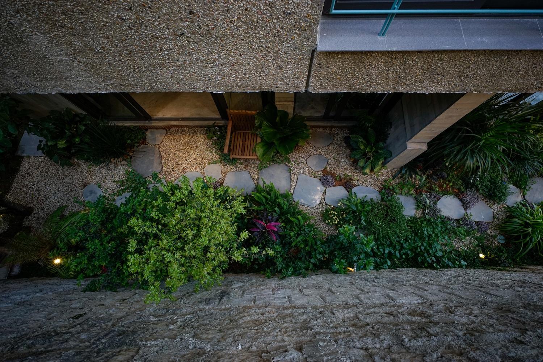Ngôi nhà Đà Lạt nằm trên sườn dốc với đầy cây lá bên trong - 7