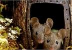 Chiêm ngưỡng bộ ảnh gây sốt chụp 'ngôi làng của những chú chuột'