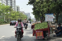Hoa quả siêu rẻ tràn vỉa hè: Người tiêu dùng cẩn thận tránh sập bẫy