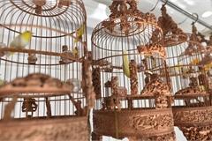 Cận cảnh bộ sưu tập lồng chim đắt đỏ giá 10 tỷ đồng của đại gia Việt