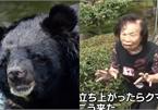 Cụ bà 82 tuổi tay không đánh thắng gấu ở vườn nhà