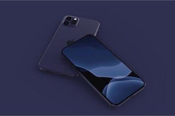 iPhone 12 Pro sẽ có thêm tùy chọn màu sắc mới