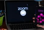 Giảng viên nhiễm SARS-CoV-2 gục xuống tử vong khi đang dạy online trên Zoom