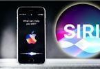 Trợ lý ảo Siri chuẩn bị hỗ trợ tiếng Việt