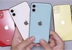 Nhiều mẫu iPhone đời cũ đồng loạt giảm giá tại Việt Nam