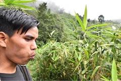Ngôi làng kỳ lạ: Người dân không có tên, gọi nhau bằng tiếng huýt sáo
