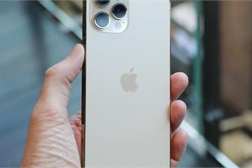 iPhone 12 Pro Max cũ xuất hiện tại Việt Nam, giá vẫn quá cao