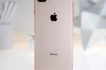 iPhone 8 Plus biến mất khỏi thị trường Việt Nam