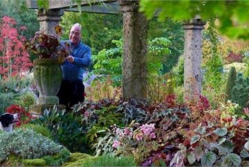 Người đàn ông dành 25 năm biến bãi đất hoang thành thiên đường hoa