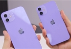 iPhone 12 và 12 Mini màu tím xuất hiện tại Việt Nam