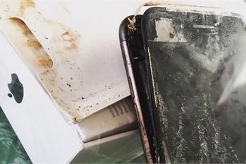 Apple bị kiện vì pin iPhone phát nổ khiến người dùng bị thương
