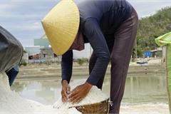 Bán 1 kg muối mua không nổi ổ bánh mì chay, diêm dân tính bỏ ruộng hoang