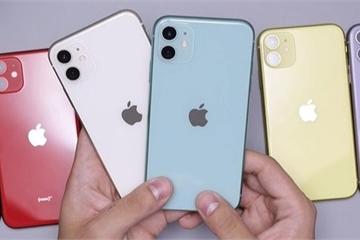 iPhone X, iPhone 11 mất Face ID về Việt Nam với giá rẻ, cẩn thận khi mua
