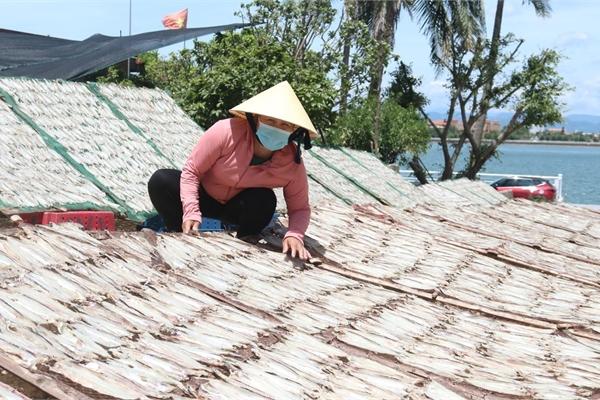 Người phụ nữ làng biển rủ chị em làm giàu, thu lãi 2 tỷ đồng mỗi năm