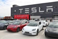 Xe Tesla lại gặp lỗi khiến chủ nhân 'khóc dở mếu dở'