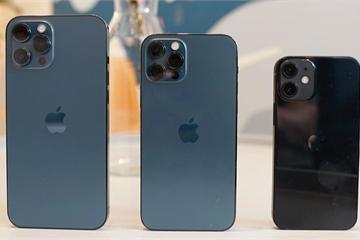 "Chiếc iPhone nào sẽ bị ""khai tử"" khi Apple ra mắt iPhone 13?"
