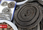 Coronavirus: China wildlife trade ban 'should be permanent'