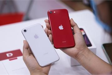 Nhà bán lẻ mong doanh số iPhone SE 2020 bằng nửa iPhone 11