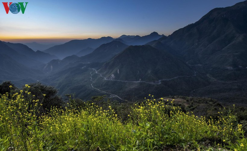 exploring spectacular sight of sapa during spring hinh 1