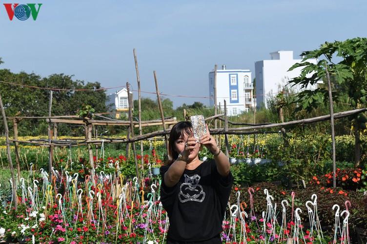 pho tho-ba bo flower village gears up for tet hinh 9