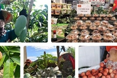 Vietnamese fruit increasingly popular among foreign consumers
