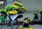 When vendors take to Hanoi streets