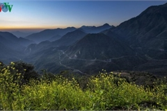 Exploring spectacular sight of Sapa during spring