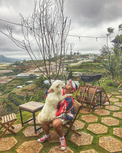 top 5 unmissable homestays in da lat hinh 9