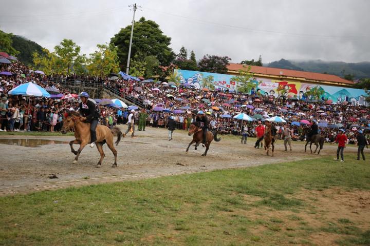 sapa to host debut fansipan horse race hinh 1