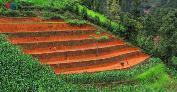 mu cang chai named among world's 50 most beautiful places to visit hinh 4