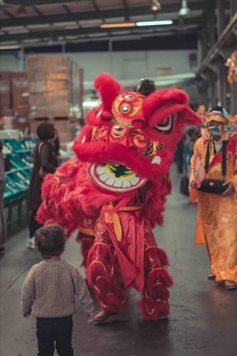 vietnamese expatriates in germany celebrate mid-autumn festival hinh 6
