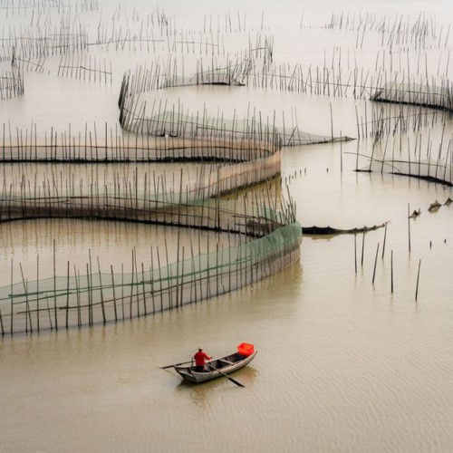 photo captured in vietnam named in top 10 of independent photographer award hinh 4