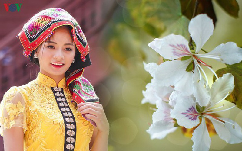 pieu scarf in thai ethnic people' life hinh 1
