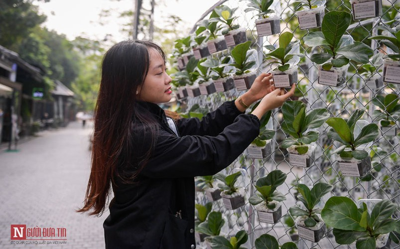unique exhibition showcasing recycled plastic opens in hanoi hinh 9