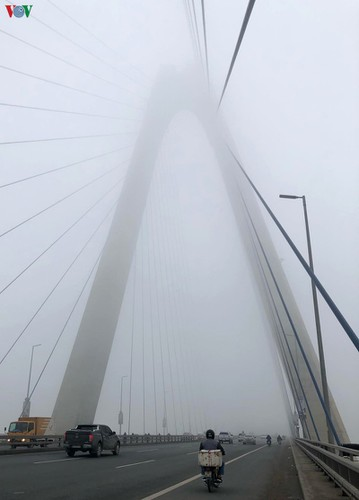 dense fog descends on the streets of hanoi hinh 10