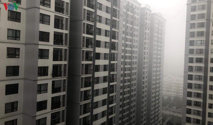 dense fog descends on the streets of hanoi hinh 14