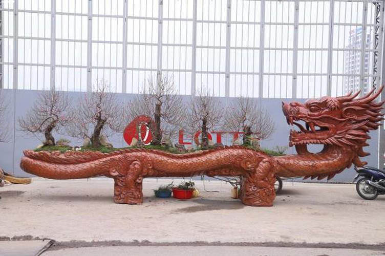 craftsman prepare unique ornamental trees ahead of year of rat hinh 1